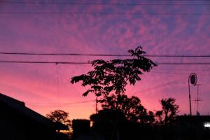 朝焼け2011.6.15